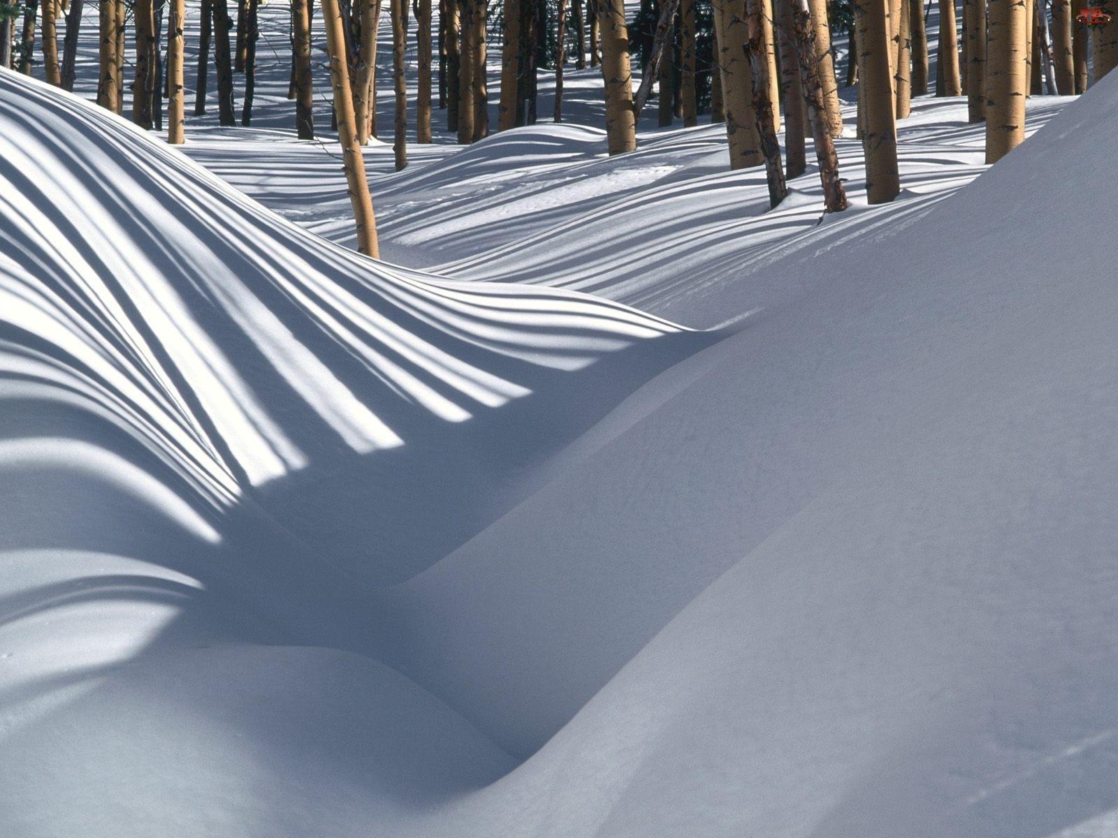 Zimowe, Drzewa, Zaspy, Śnieżne