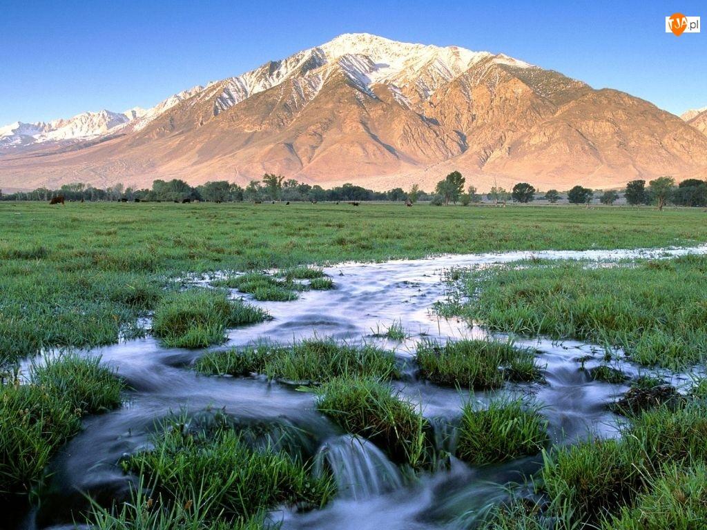 Rzeka, Góry