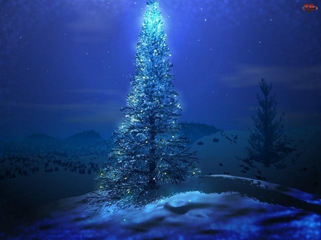 Boże Narodzenie, choinka