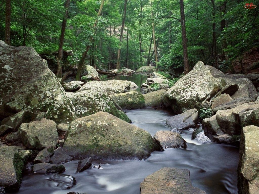 Rzeka, Skała