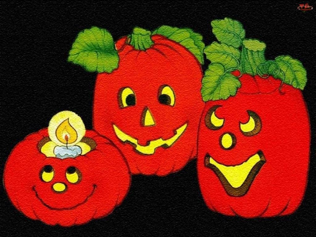 Halloween, czerwone dynie