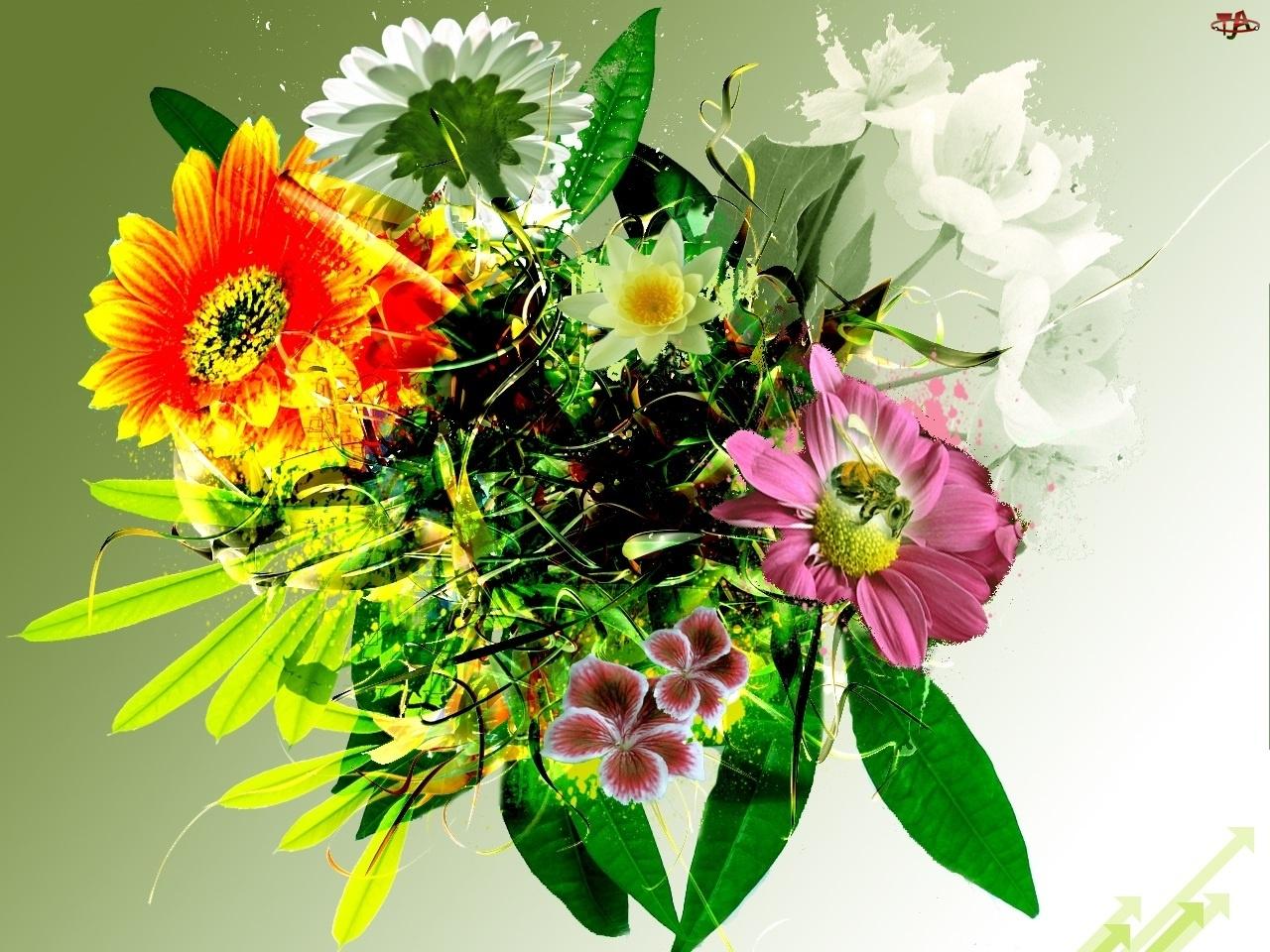 Kwiatków, Bukiecik, Kolorowych