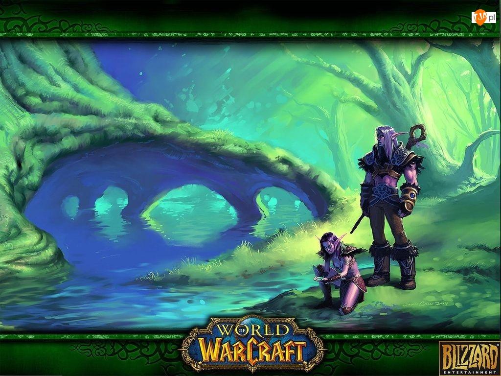 kobieta, mężczyzna, fantasy, World Of Warcraft, drzewo, woda, elf