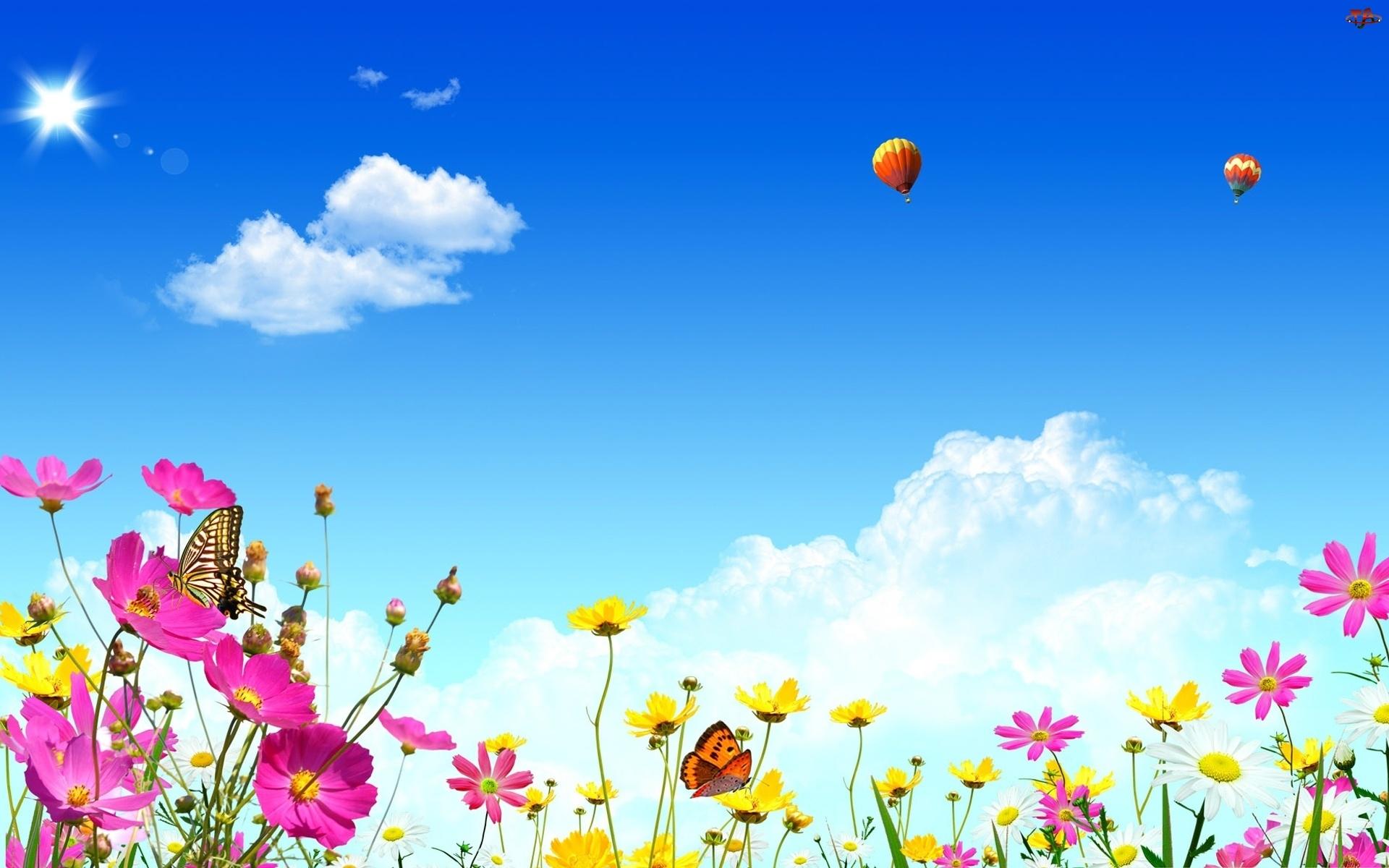 Motyle, Niebo, Wiosna, Balony, Kolorowe, Kwiatki