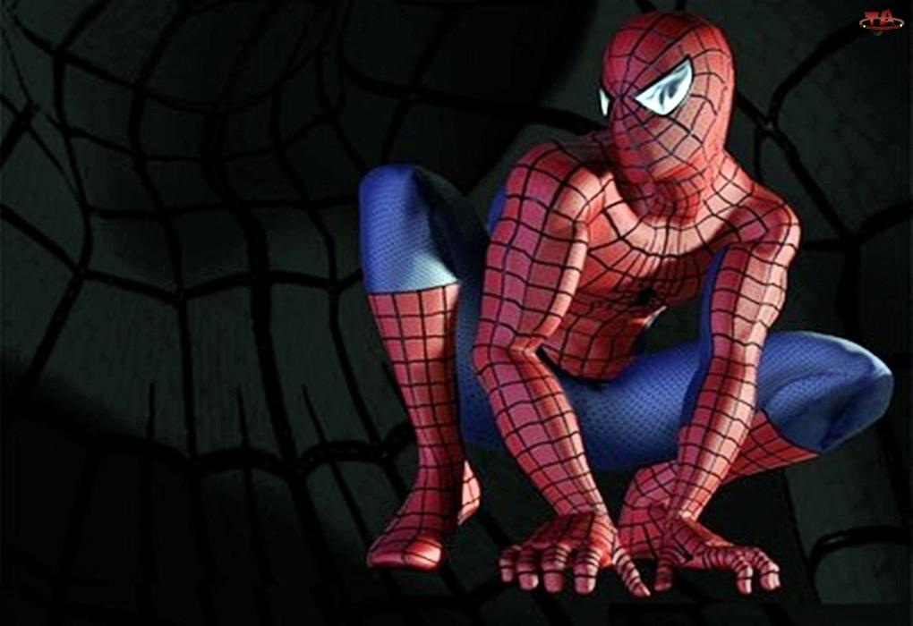Film, Spider-Man