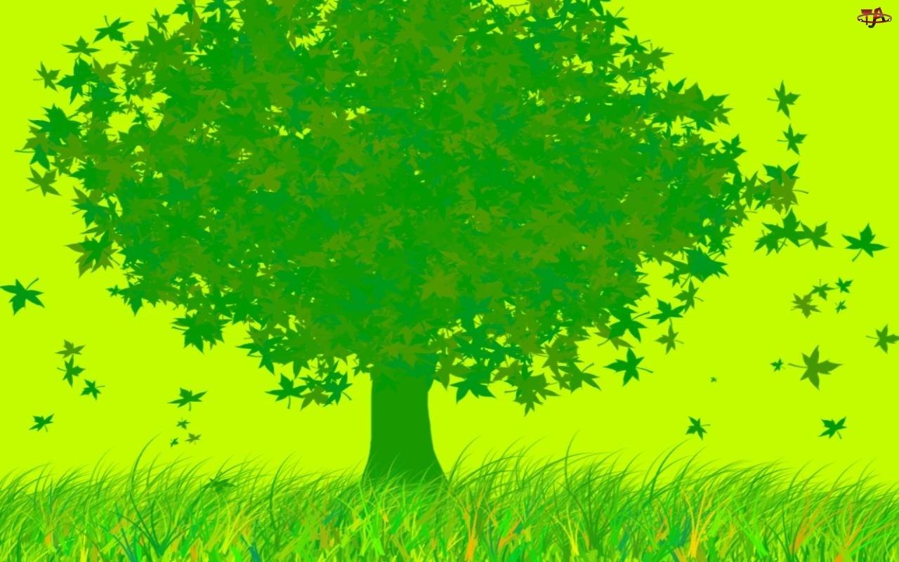 Grafika, Zielone, Drzewo