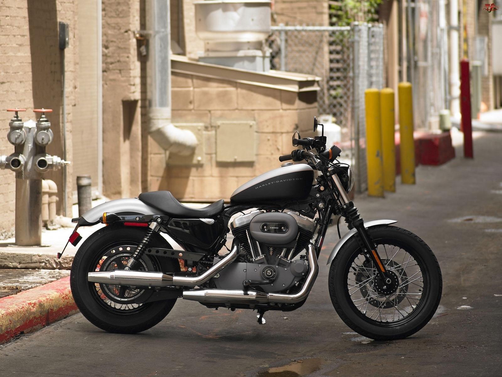 Harley Davidson XL1200N Sportster
