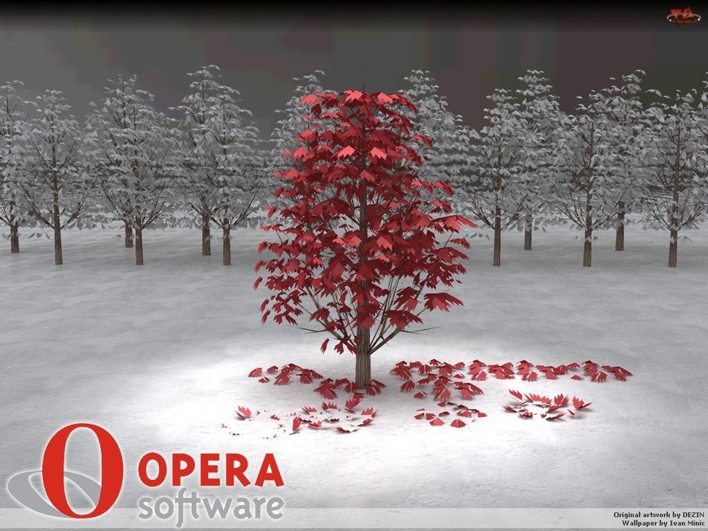 Opera, grafika, drzewa, las