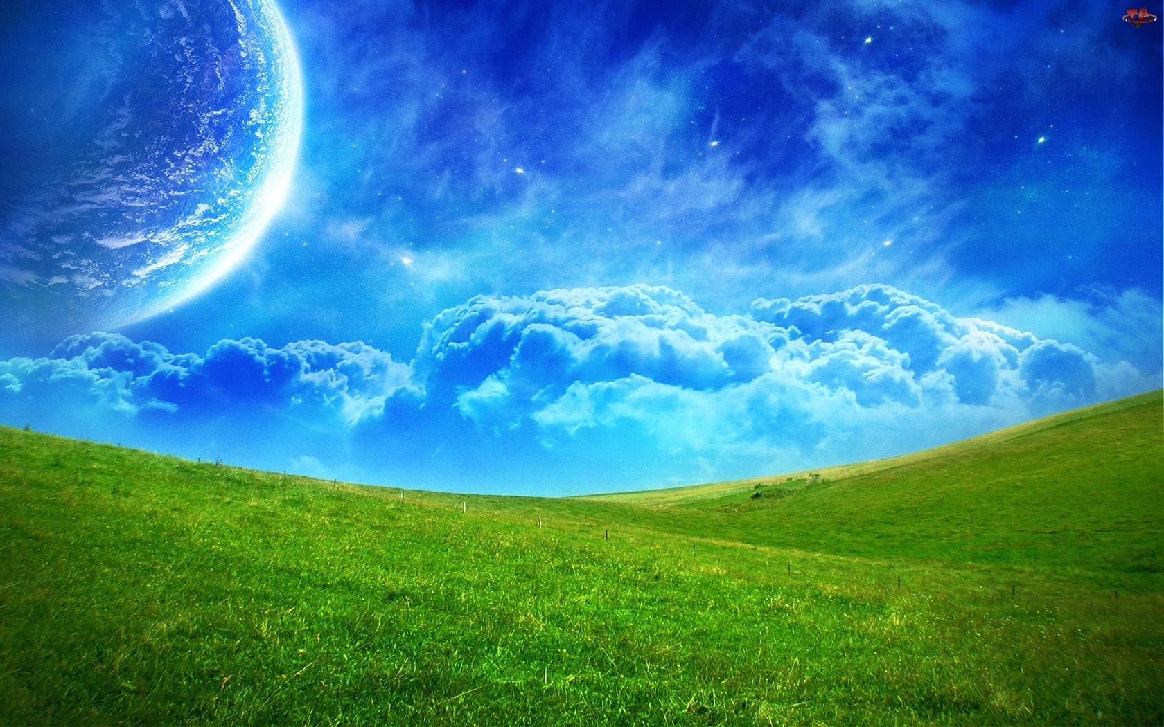Łąka, Planeta, Zielona
