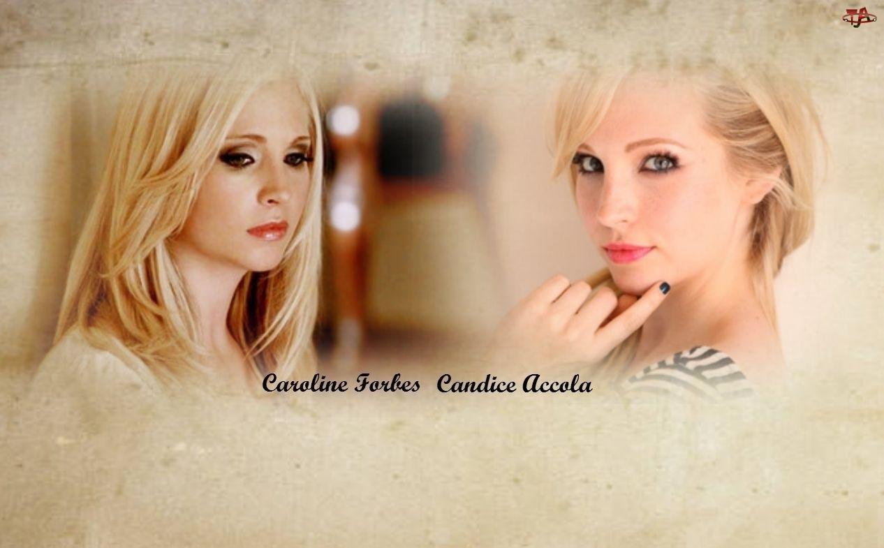 Candice Accola, Aktorka