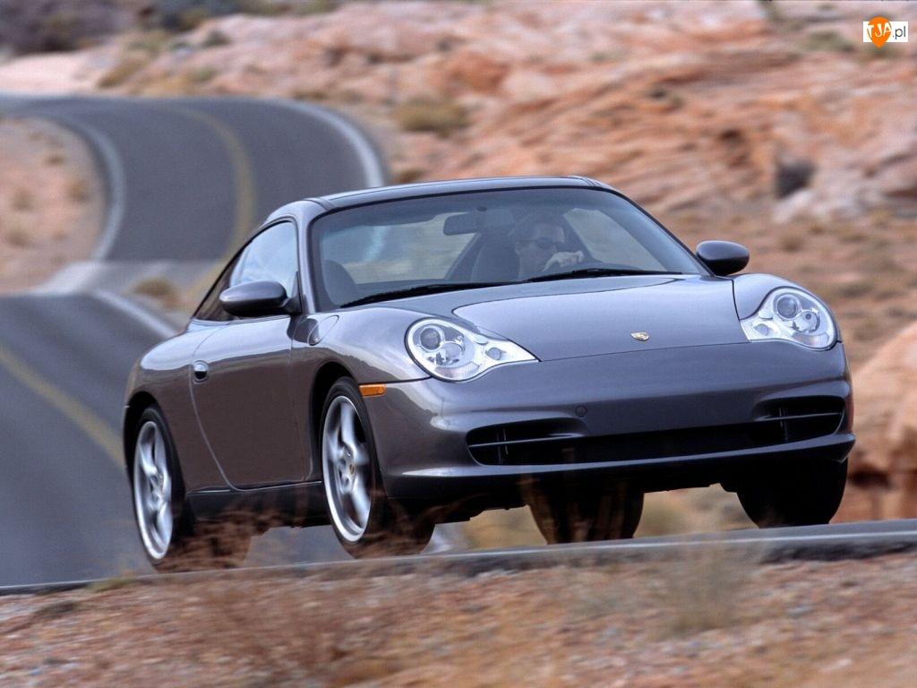 Porsche Tagra, Szary Metalik