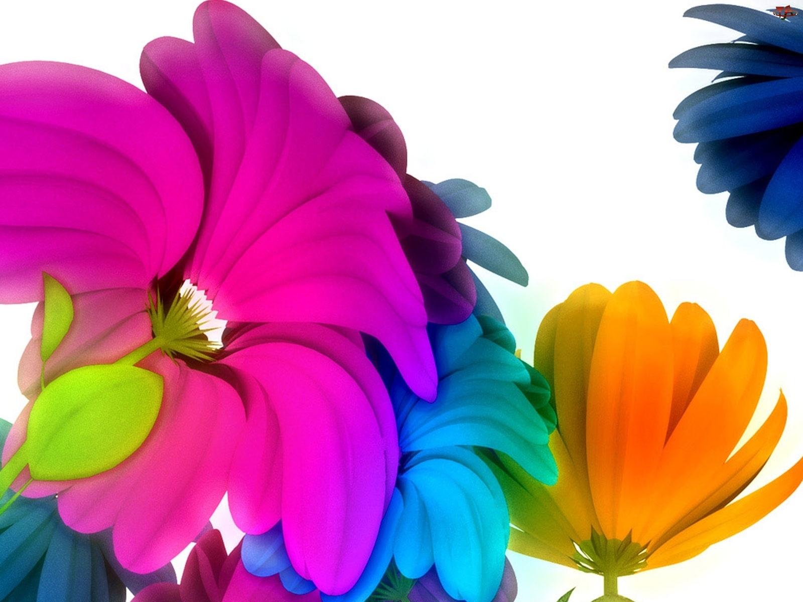 3D, Kolorowe, Kwiaty