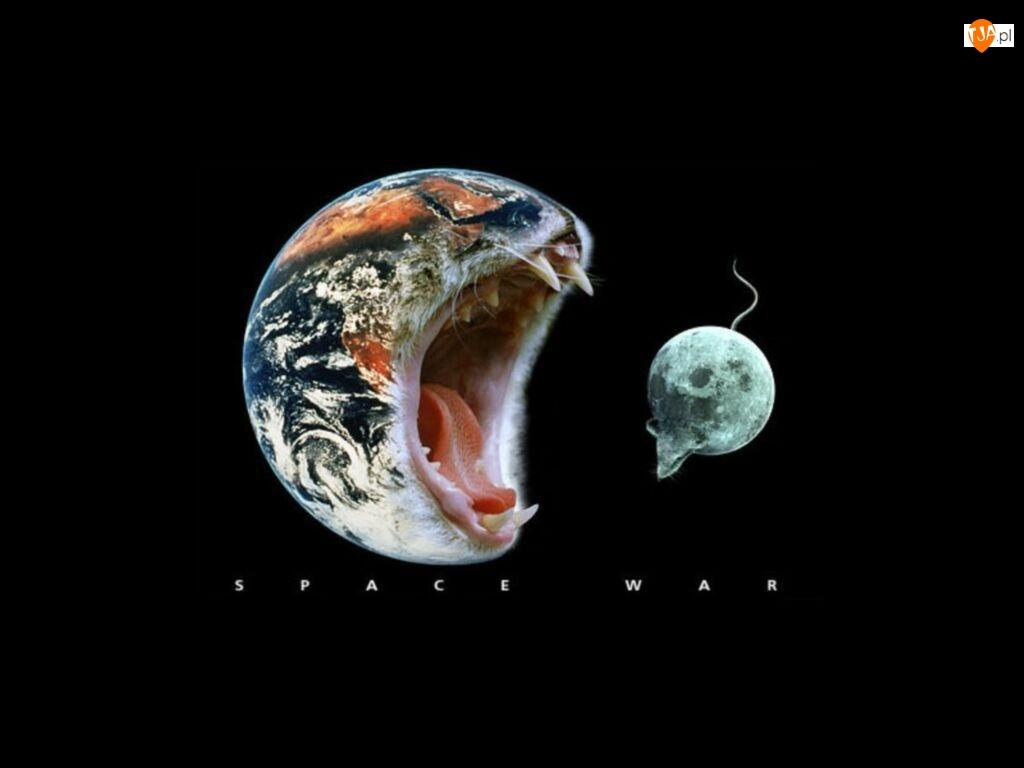 Mysz, Planety, Kot