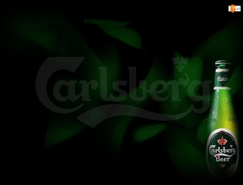 Logo, Ciemne, Butelka, Tło, Calsberg, Zielone