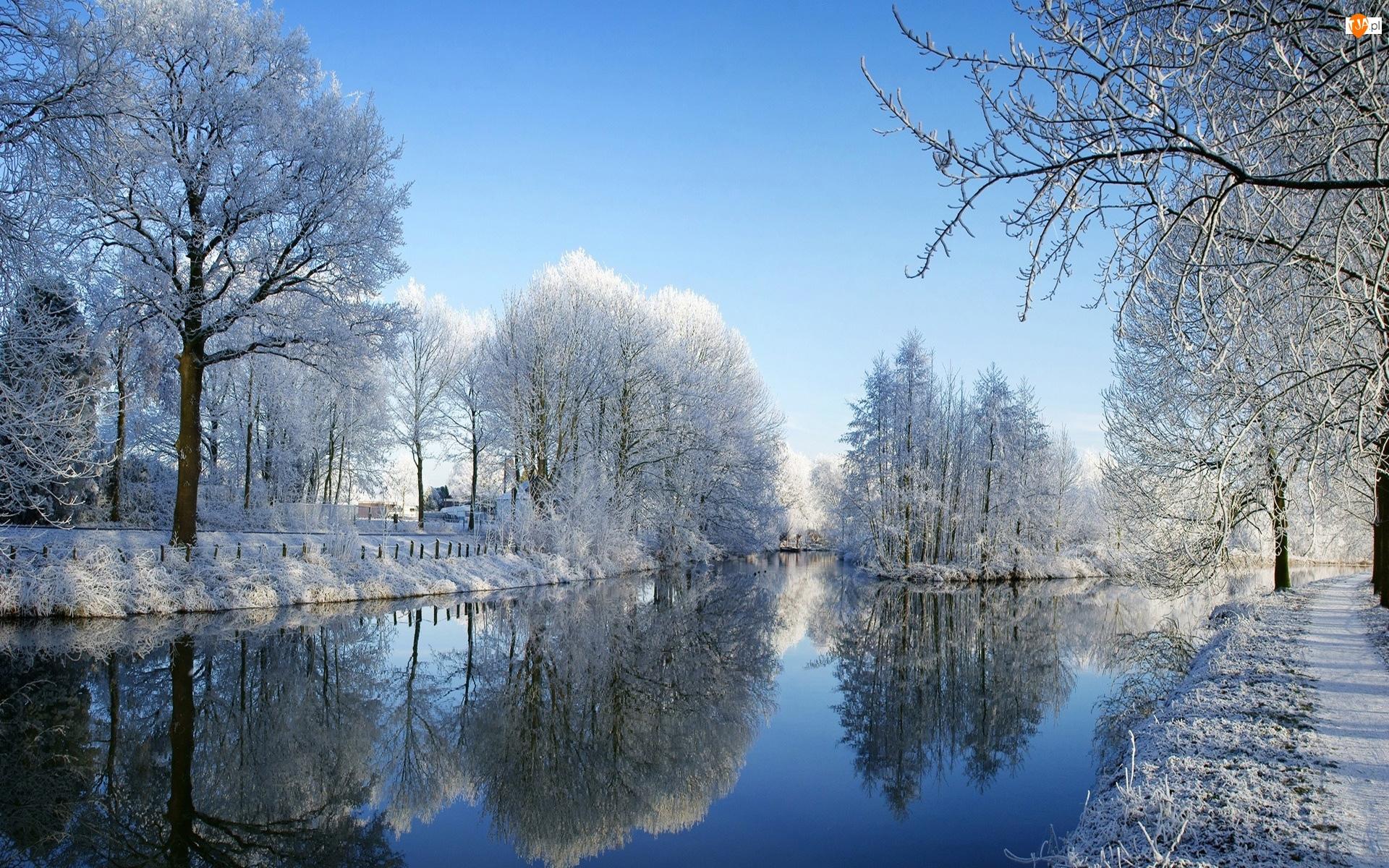 Zima, Rzeka, Drzewa, Szron