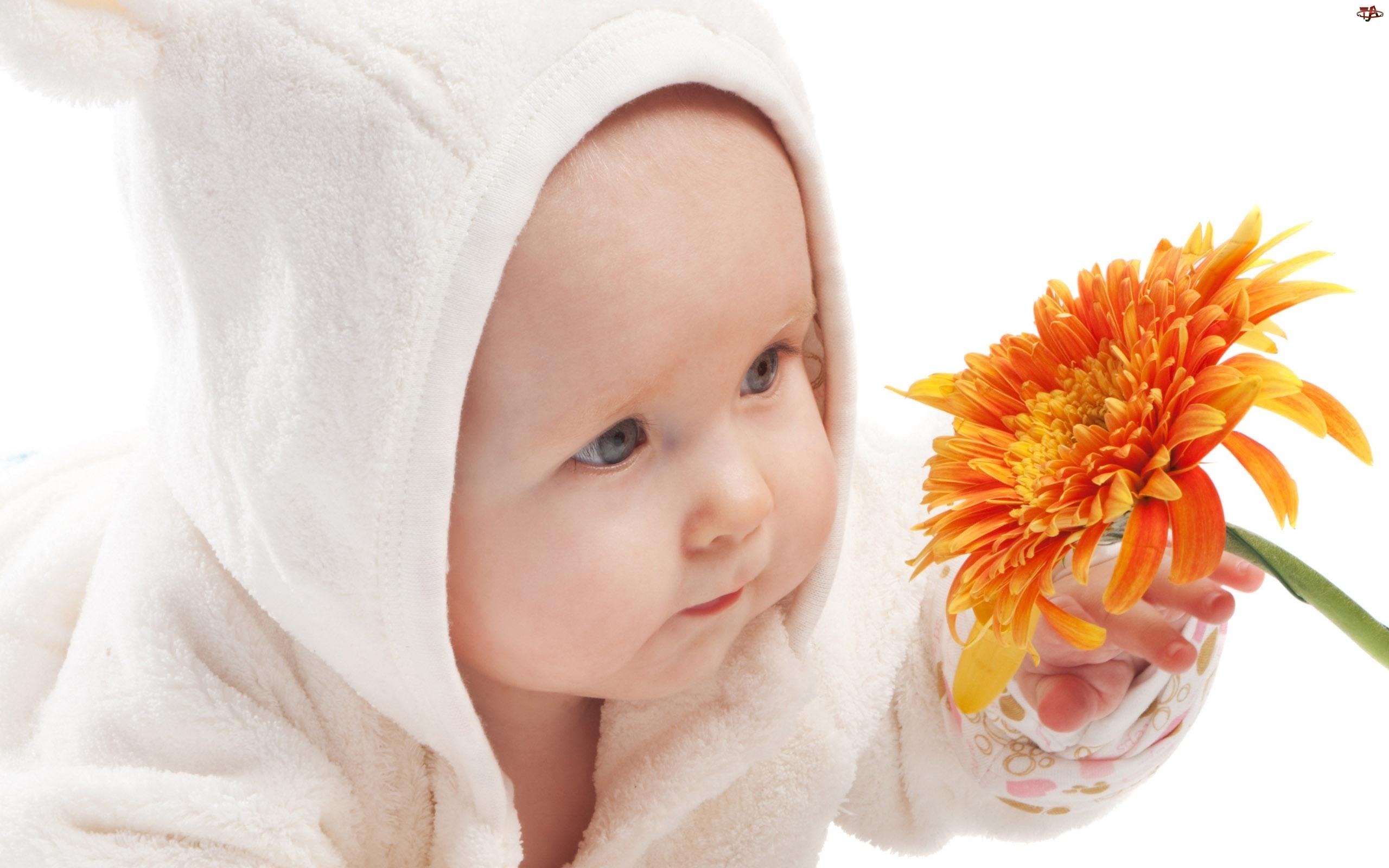Dziecko, Kwiat