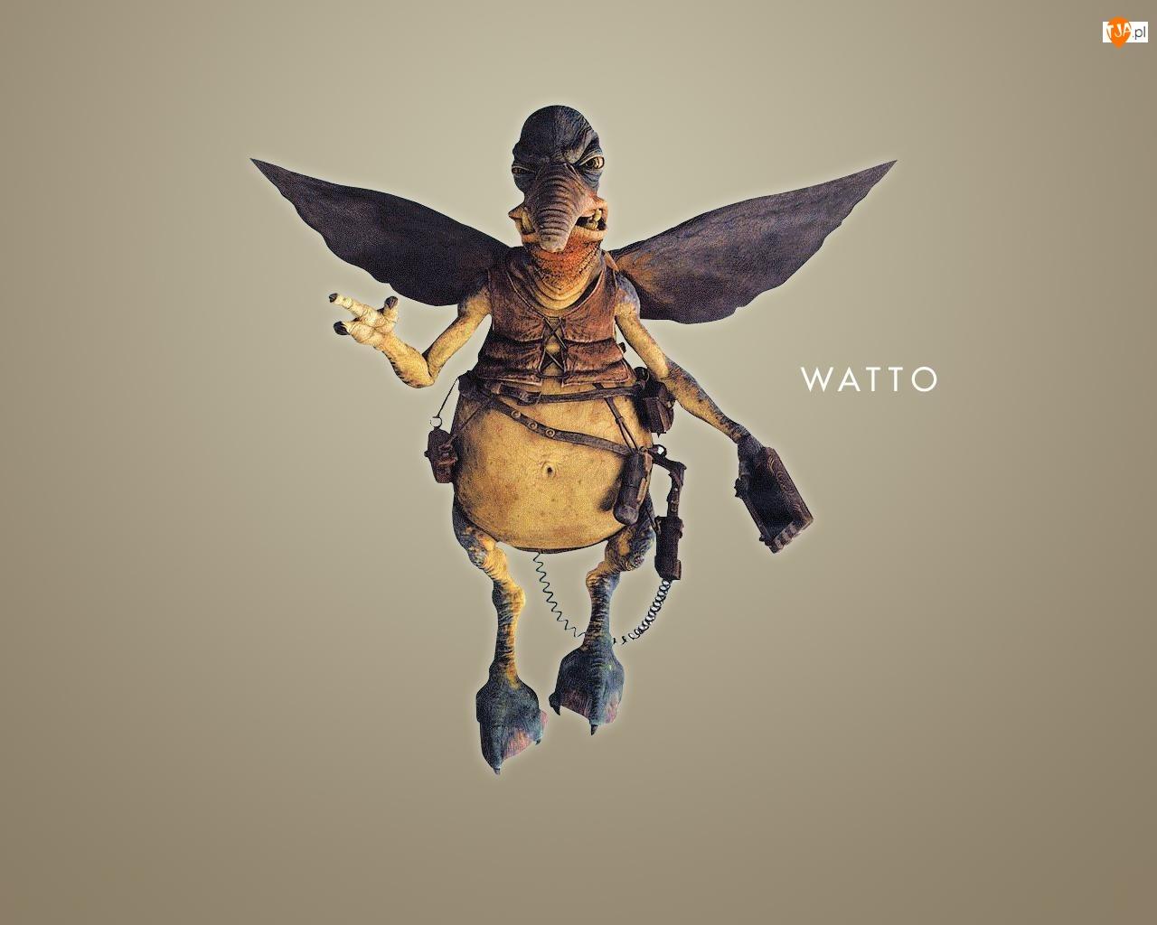Star Wars, dziwoląg, ptak, lata