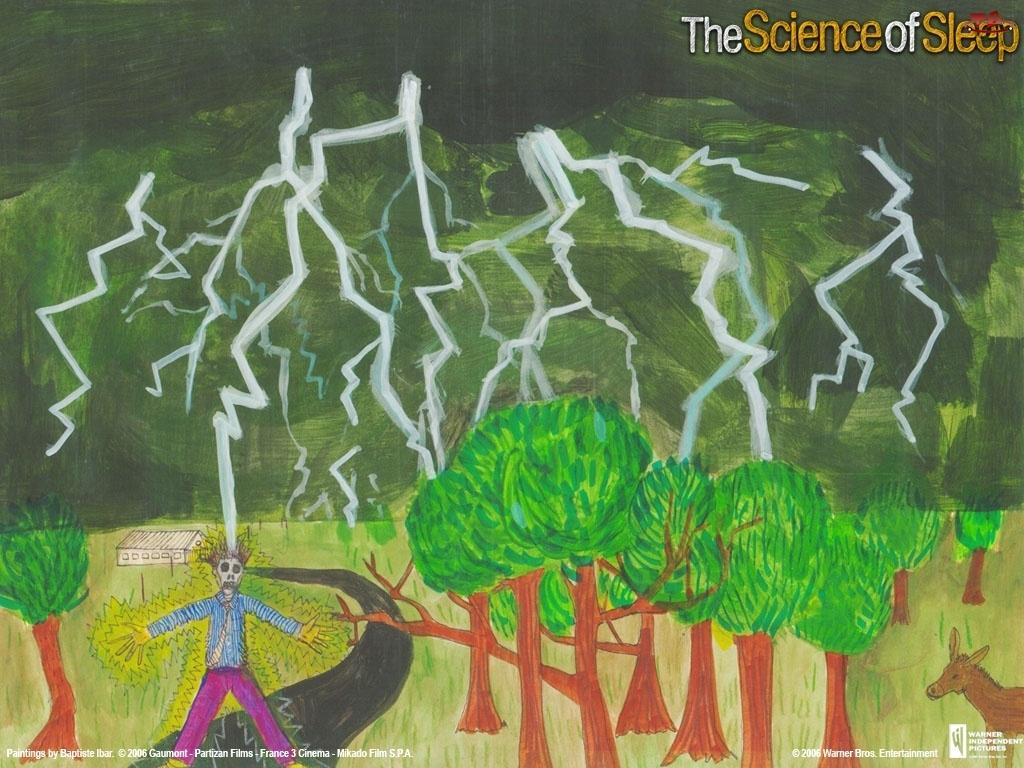 pioruny, ofiara, The Science Of Sleep, drzewa, burza, porażenie