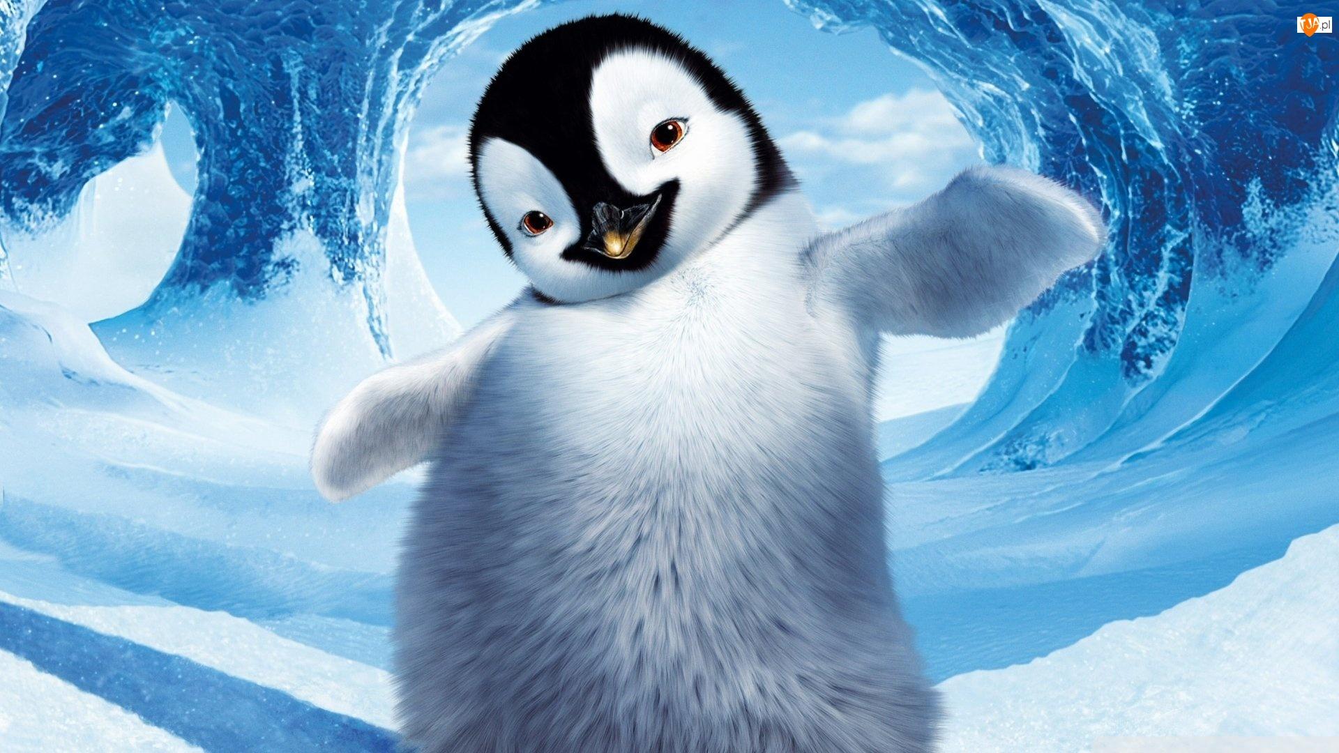 Pingwin, Fala