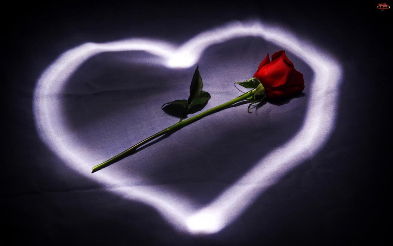 Serce, Walentynki, Róża