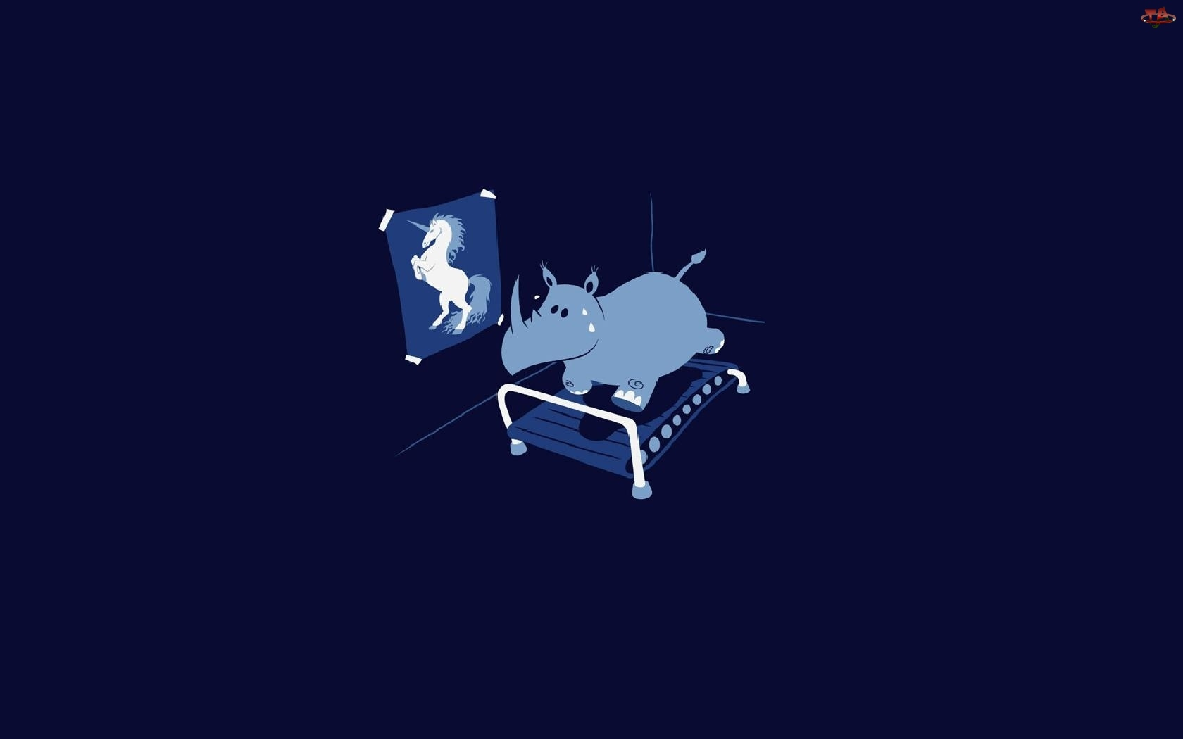 Nosorożec, Sport