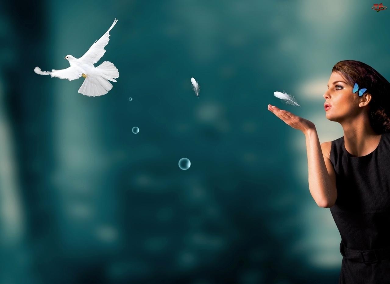 Ptak, Kobieta, Pióra