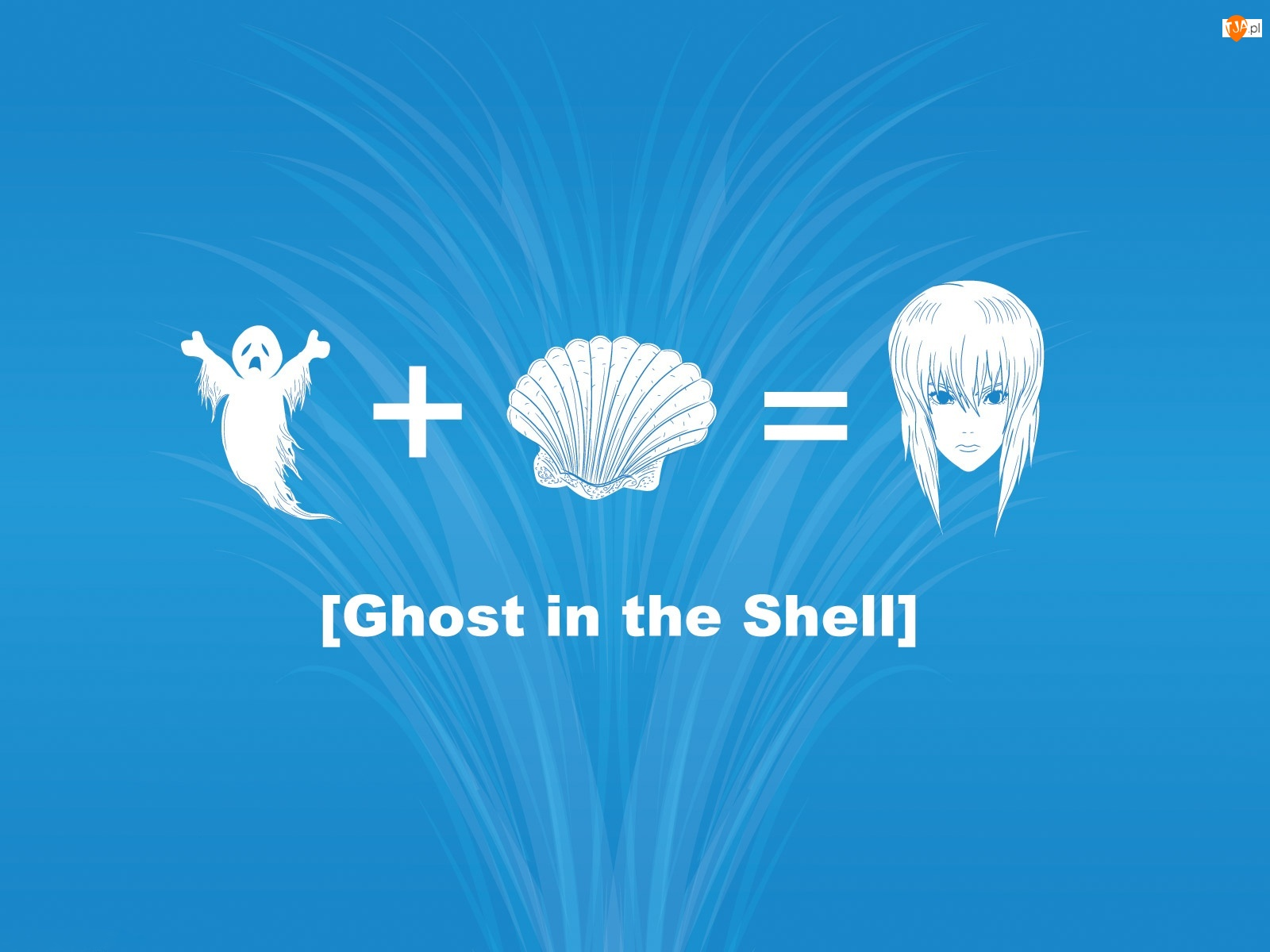 Ghost In The Shell, Równanie