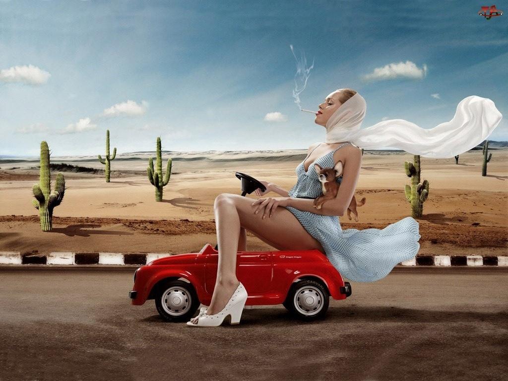 Piesek, Kobieta, Samochodzik
