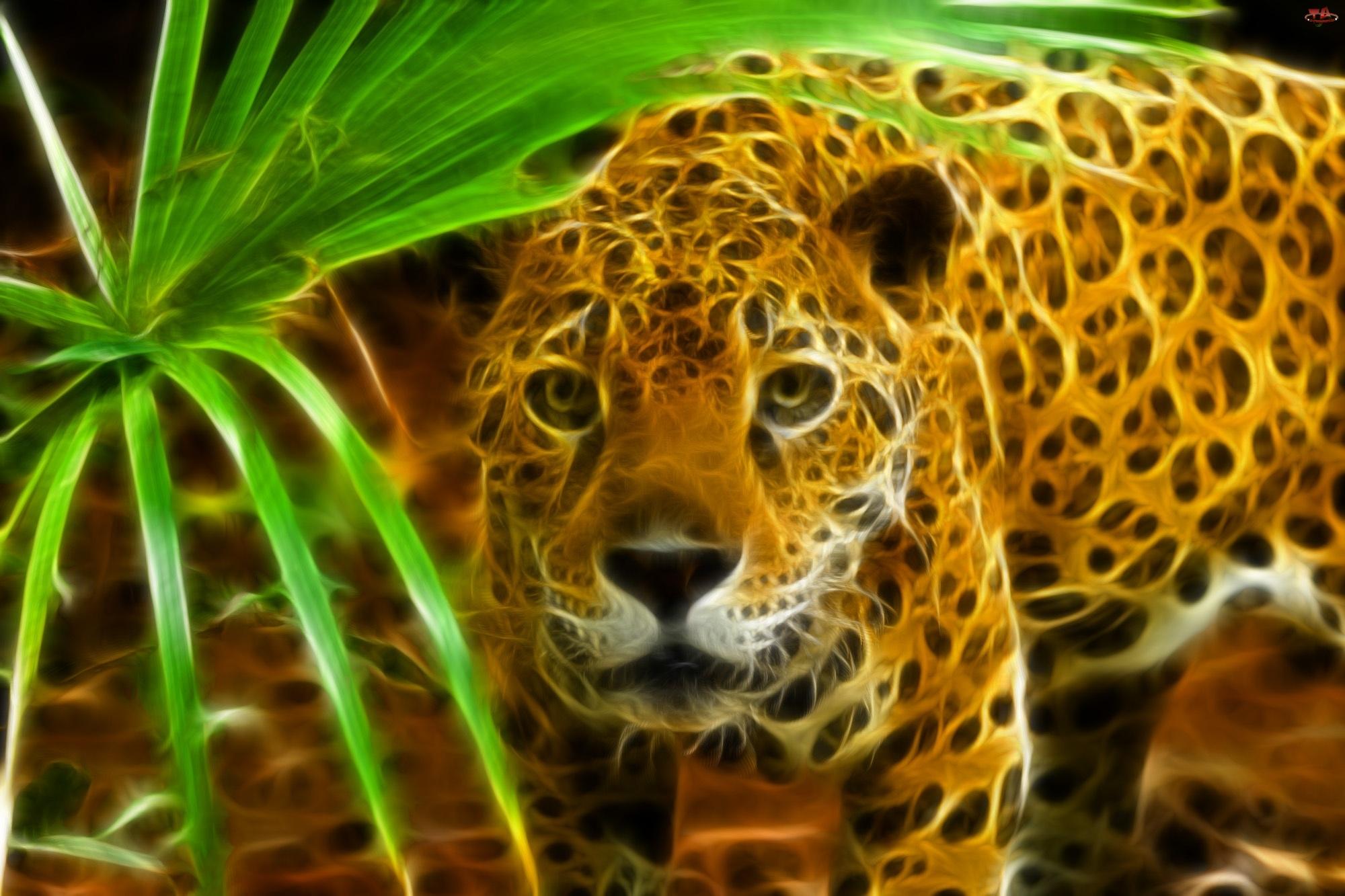 Jaguar, Fractalius