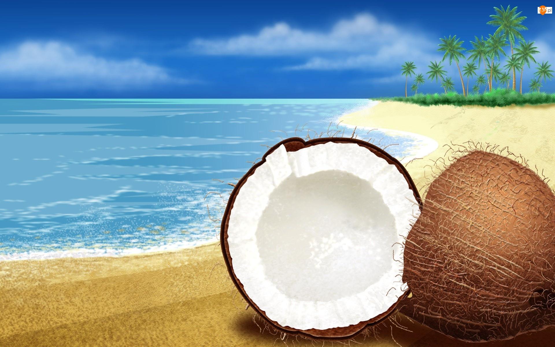 Kokos, Plaża, Woda