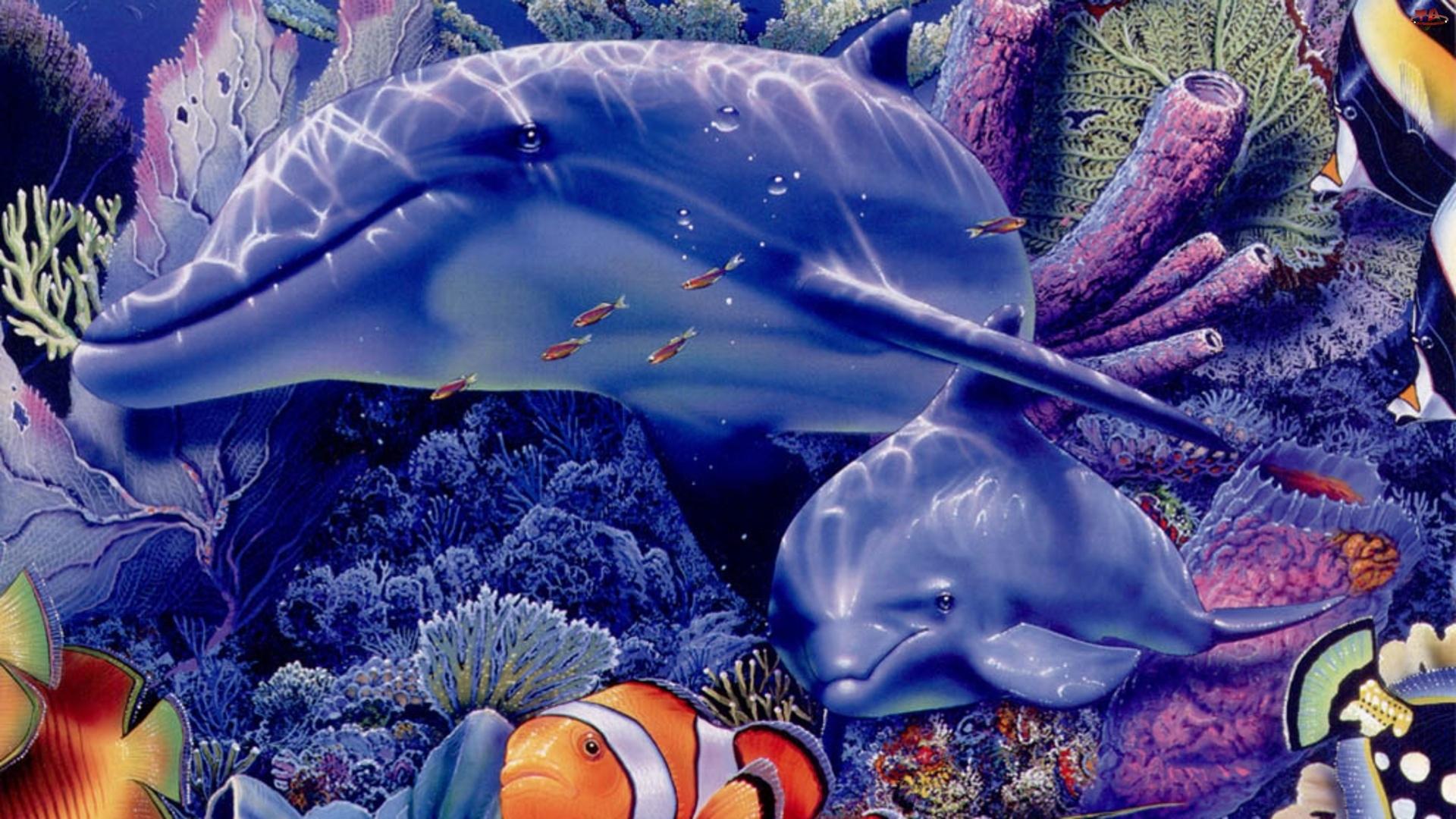 Morskie, Rybka, Dno, Delfiny