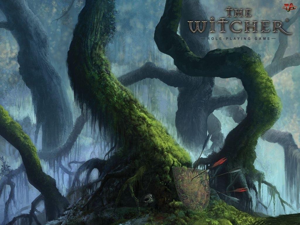 las, The Witcher, strzały, tarcza, drzewo