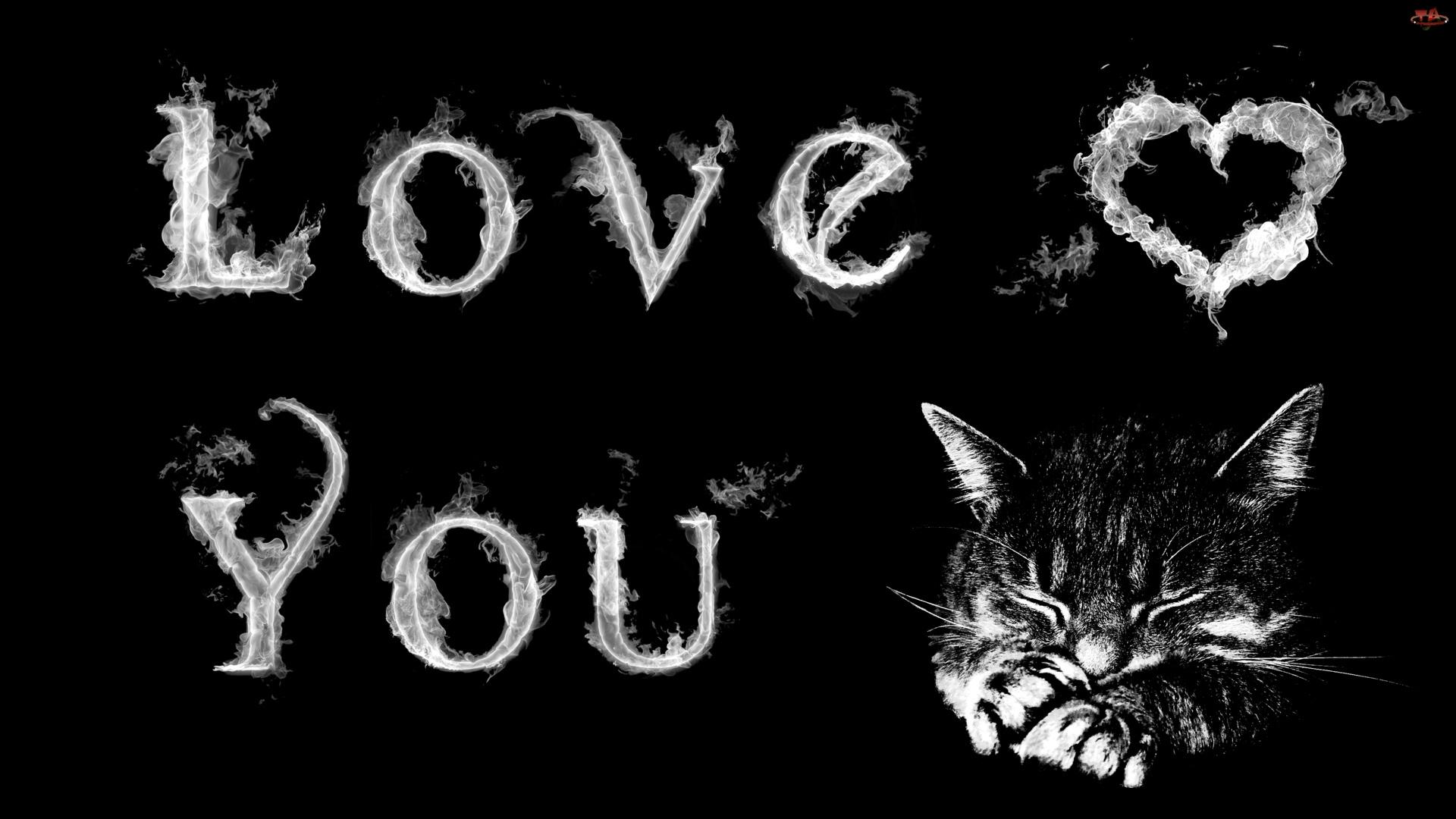 Kotek, Serduszko, Kocham, Cię
