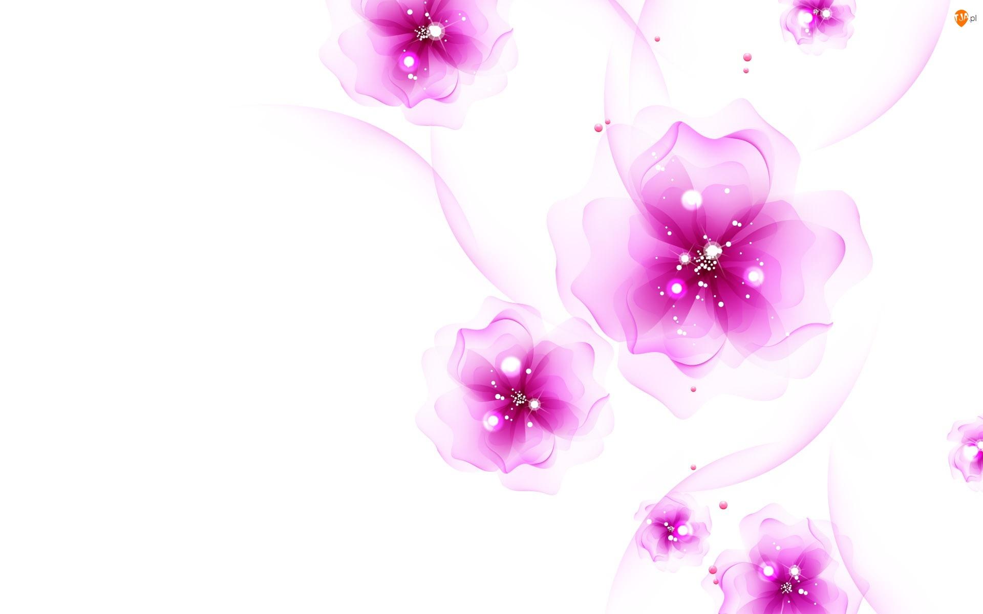 Różowe, Kwiaty