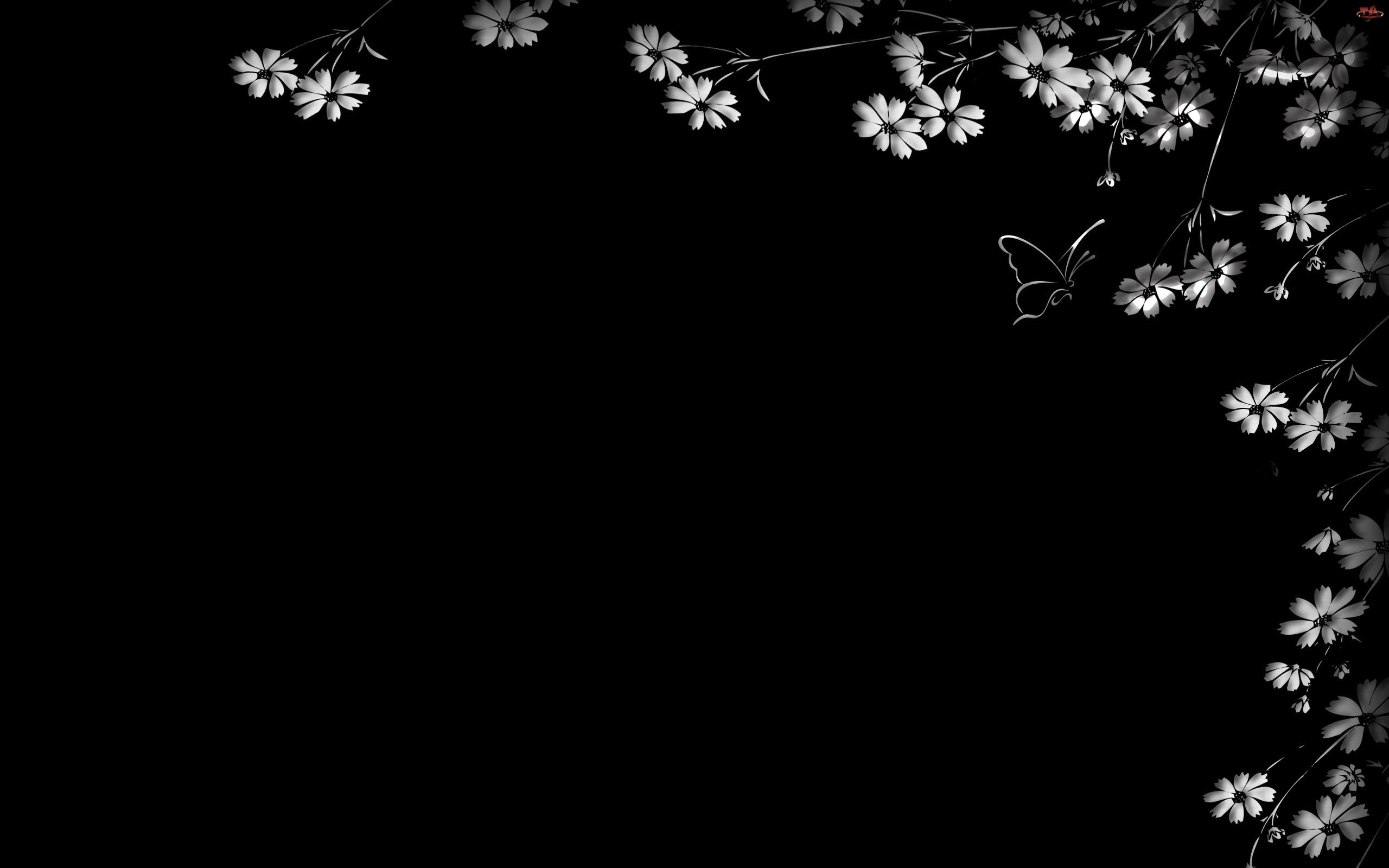 Kwiatuszki, Motyl