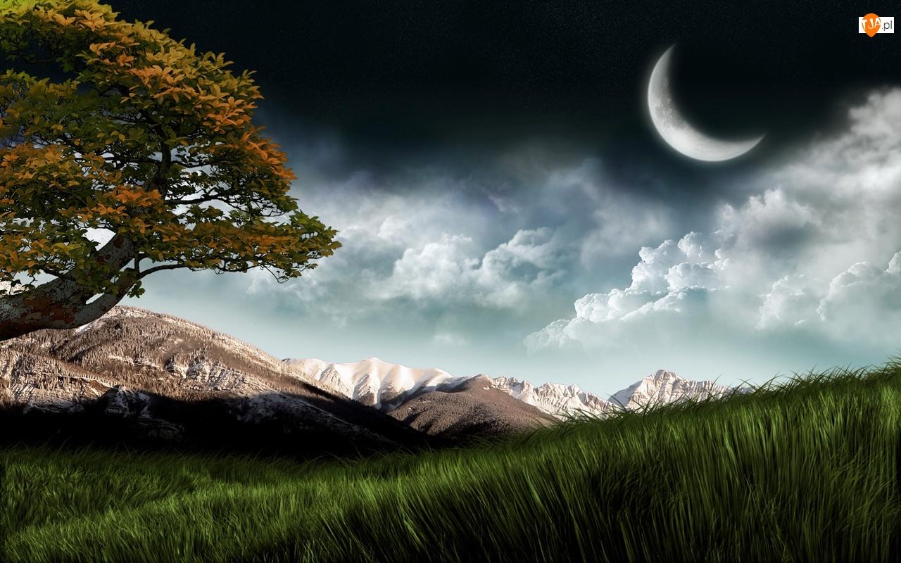 Chmury, Księżyc, Drzewo