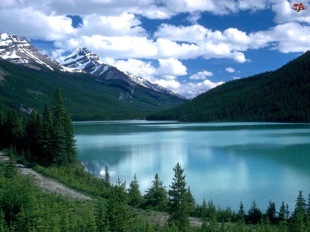 Las, Jezioro, Chmury