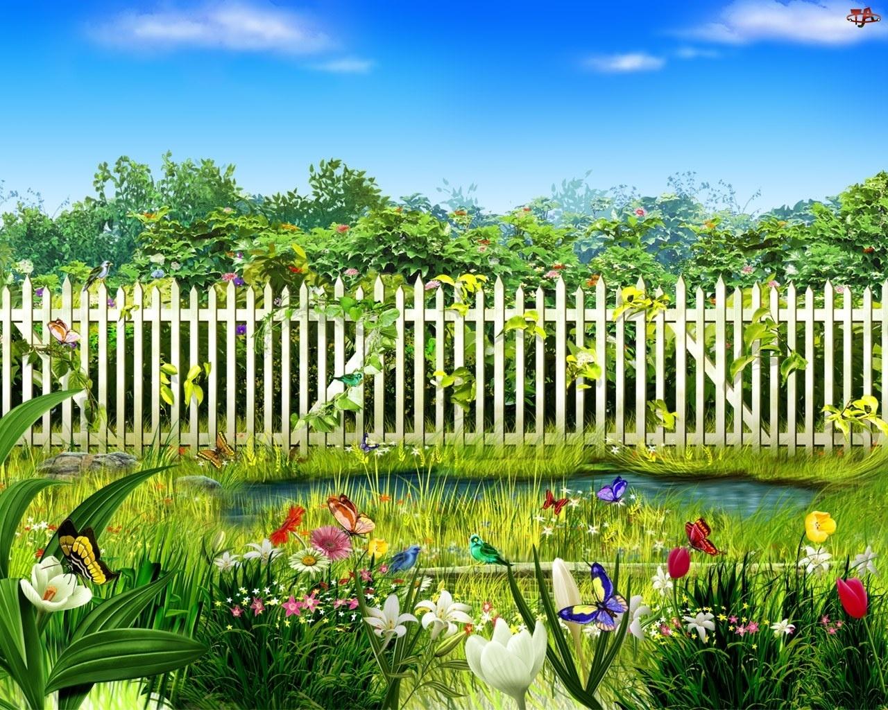 Bajorko, Ptaki, Ogród, Płot, Kwiaty, Motyle