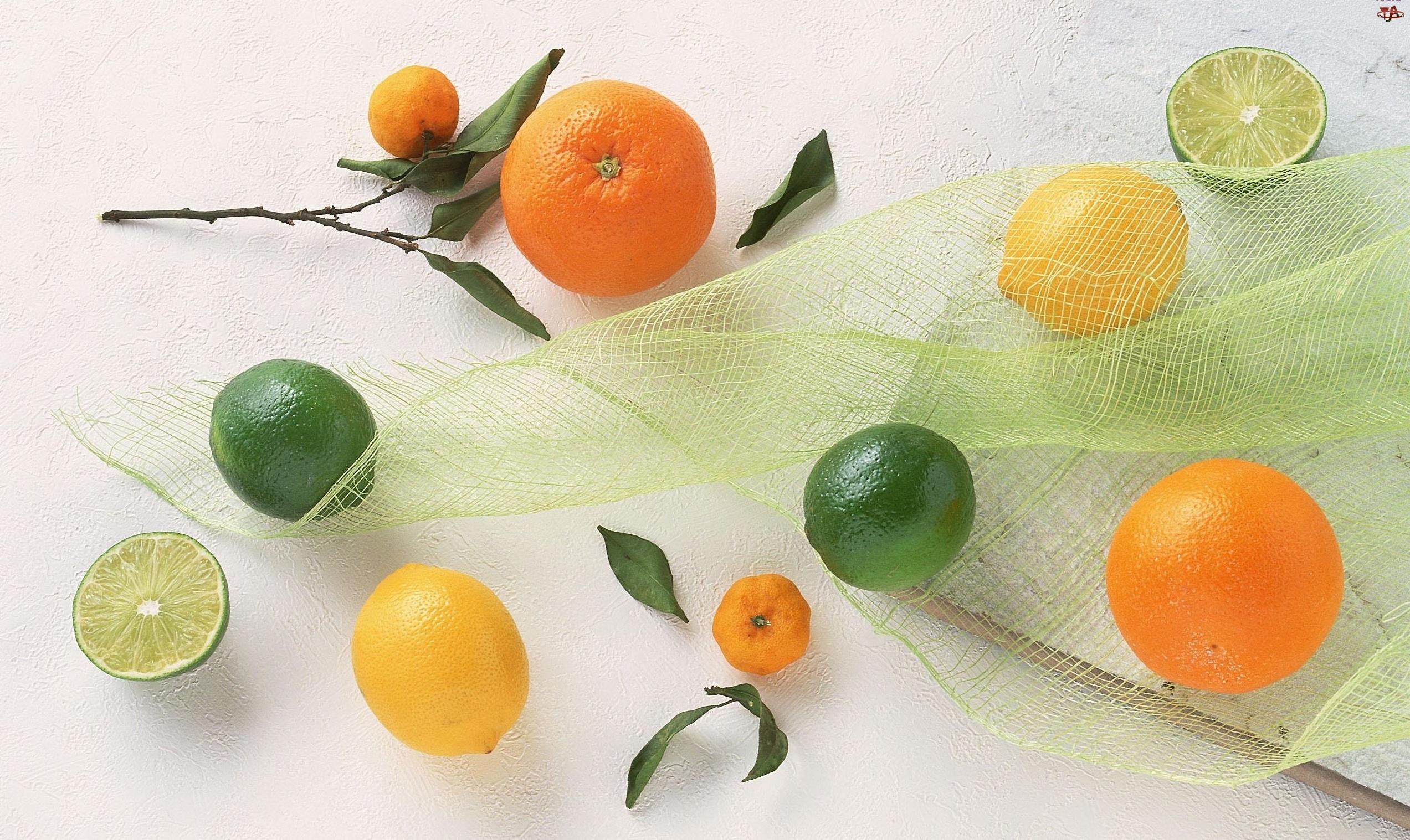 Limonka, Owoce, Siateczka