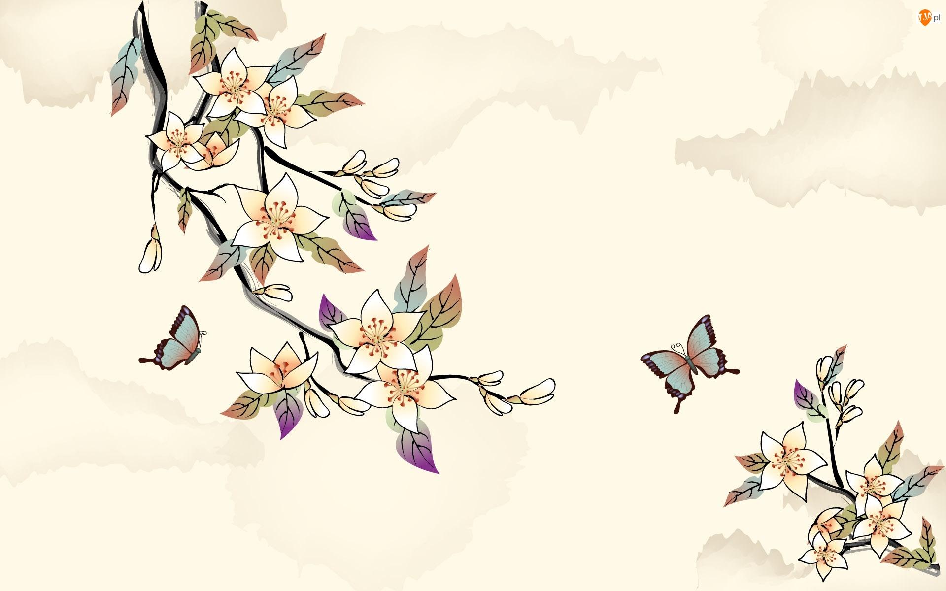 Kwiaty, Pomarańczowe, Gałązki, Motyle, Kwitnące, Biało