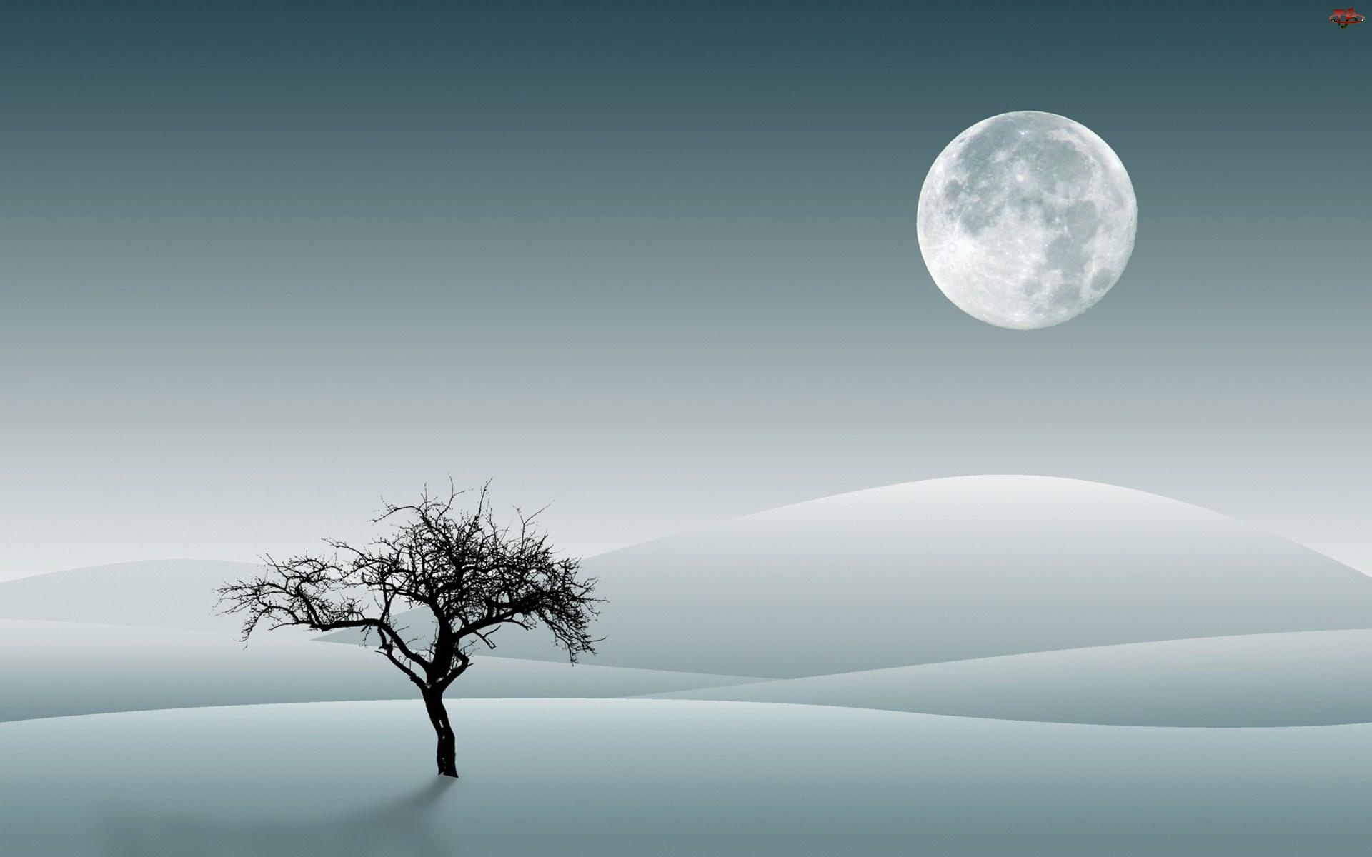Grafika, Zima, Śnieg, Drzewo, Księżyc