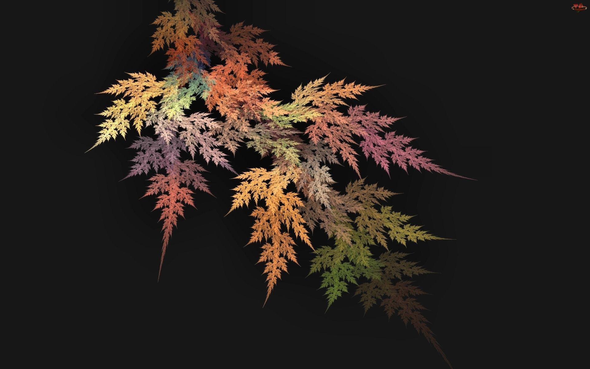 Liści, Kompozycja, Kolorowych