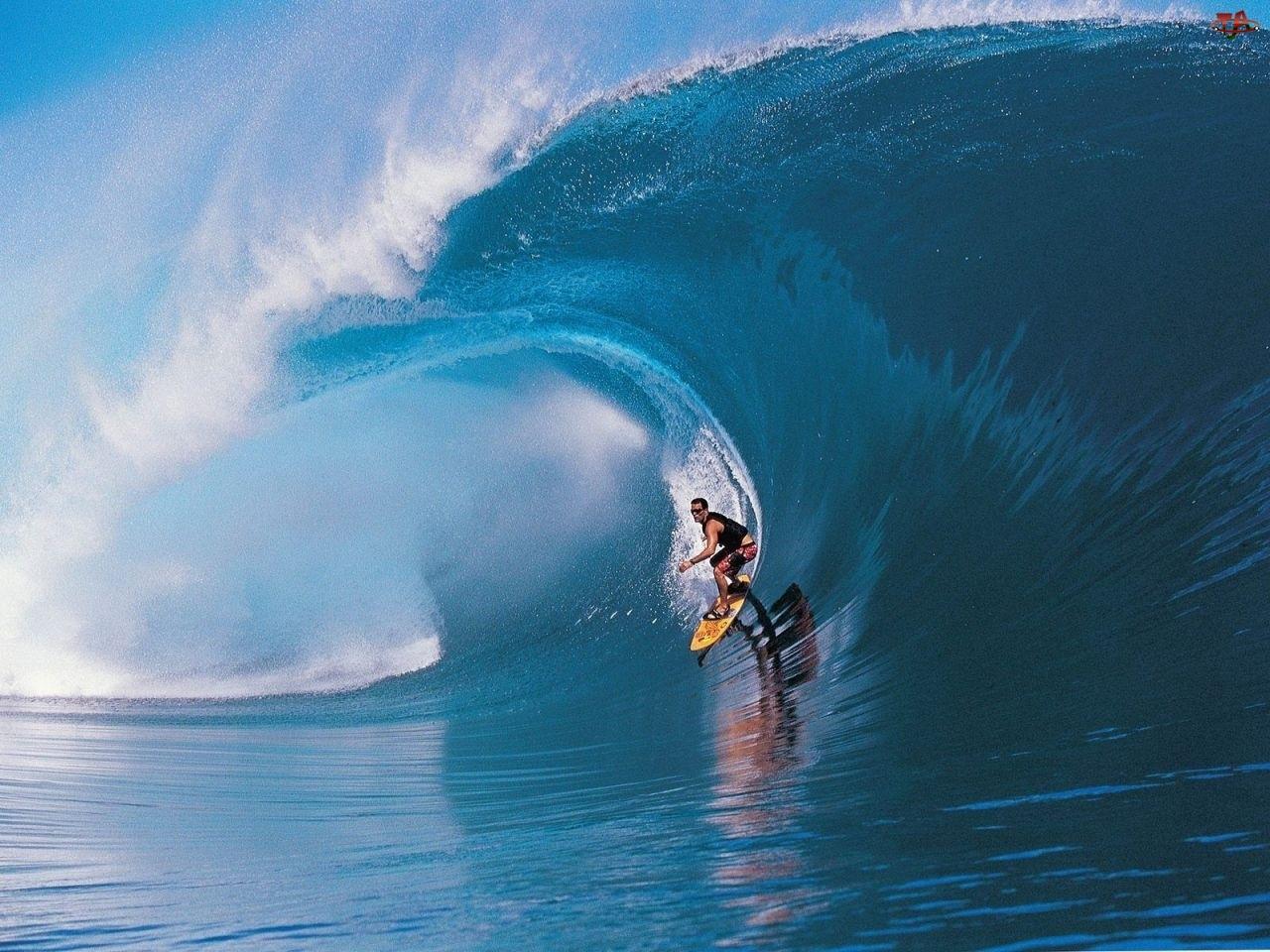 Fala, Surfer