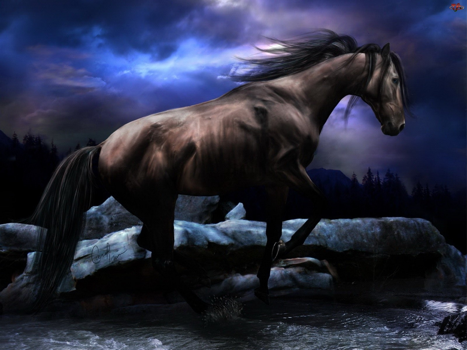 Woda, Koń, Kamienie
