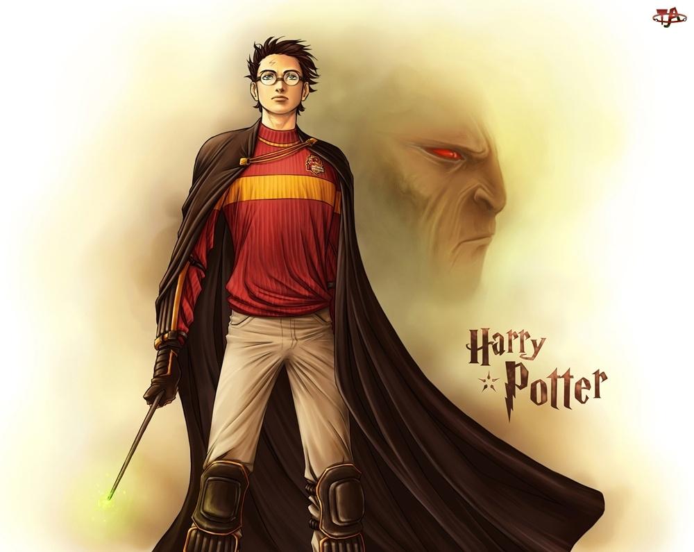 Różdżka, Czarodziej, Harry Potter
