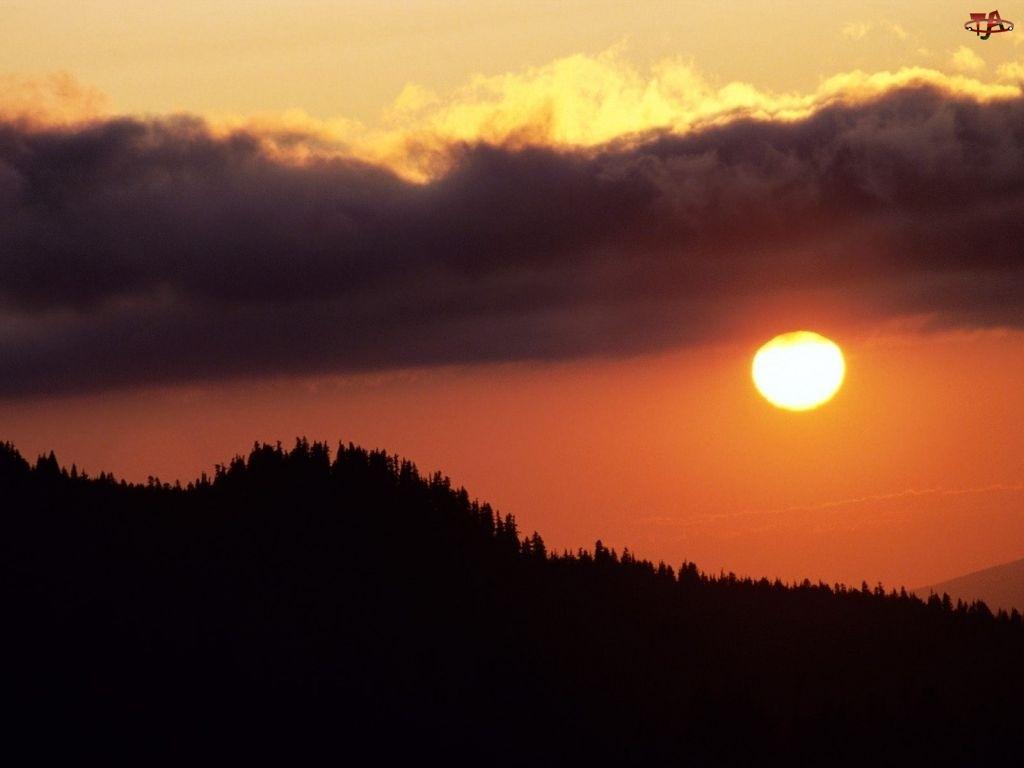 Chmura, Zachód Słońca, Las