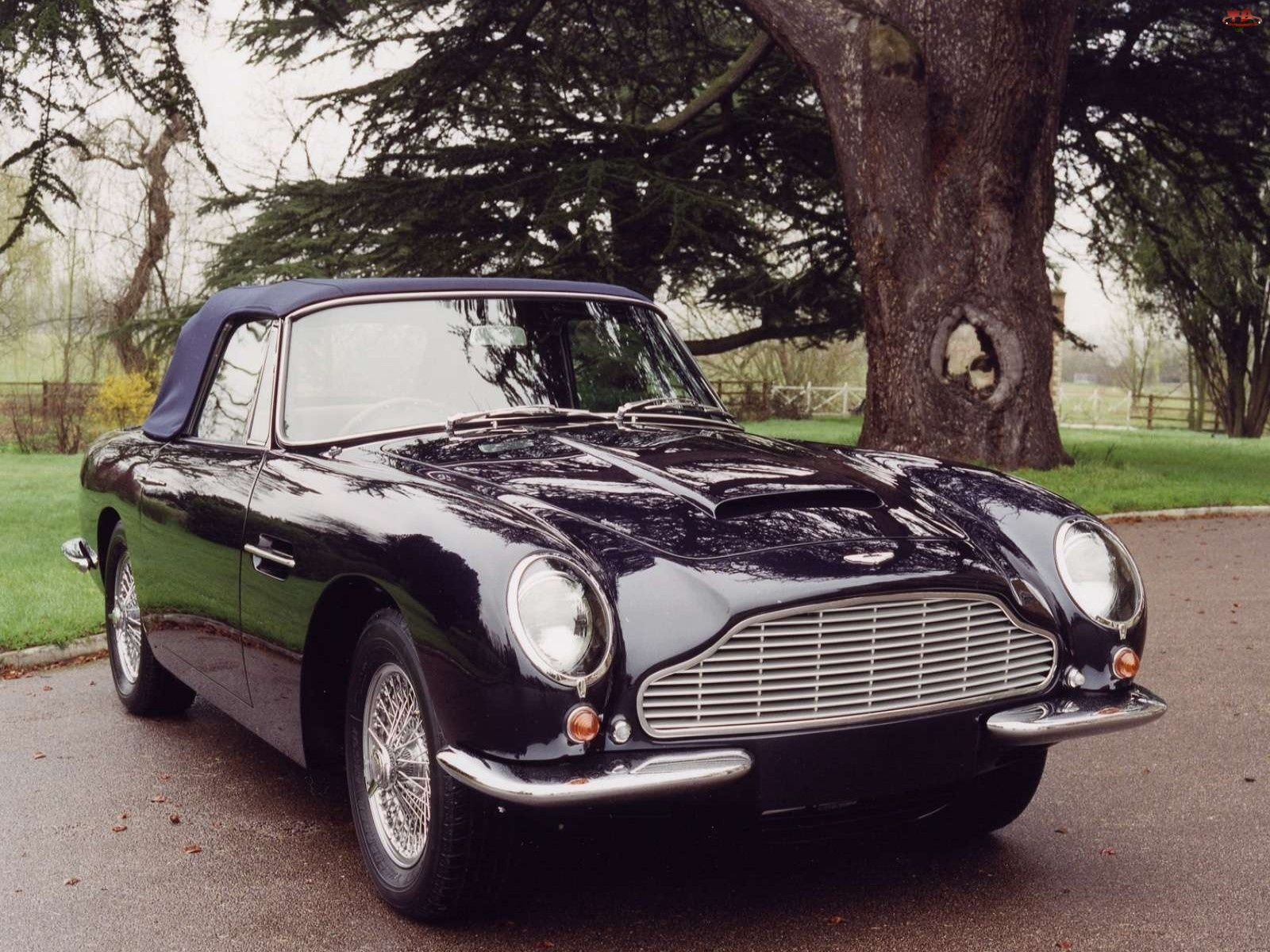 Aston Martin DB6, Volante