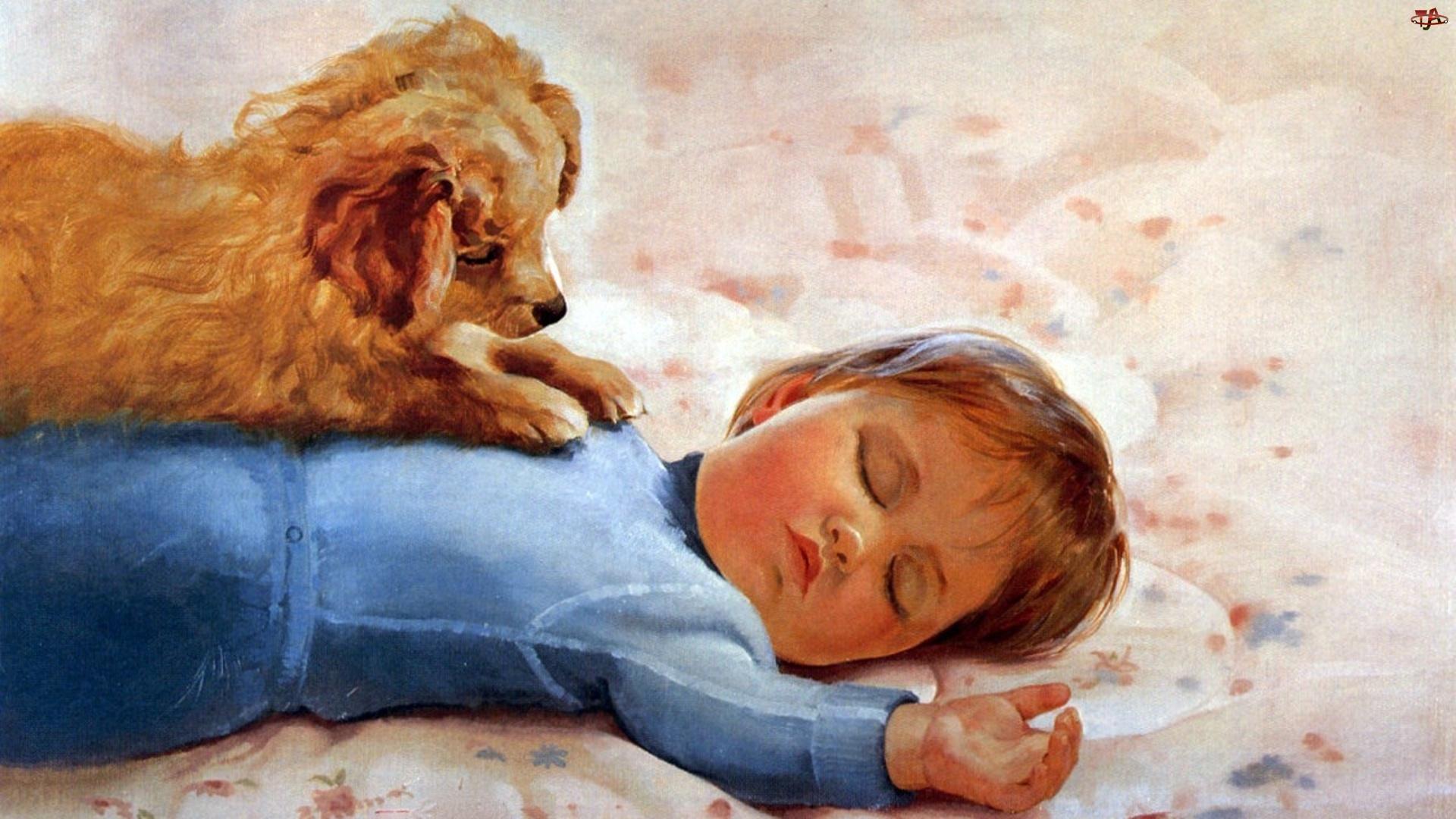 Pies, Śpiące, Dziecko