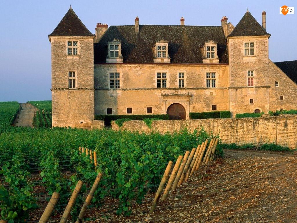 Francja, Dworek
