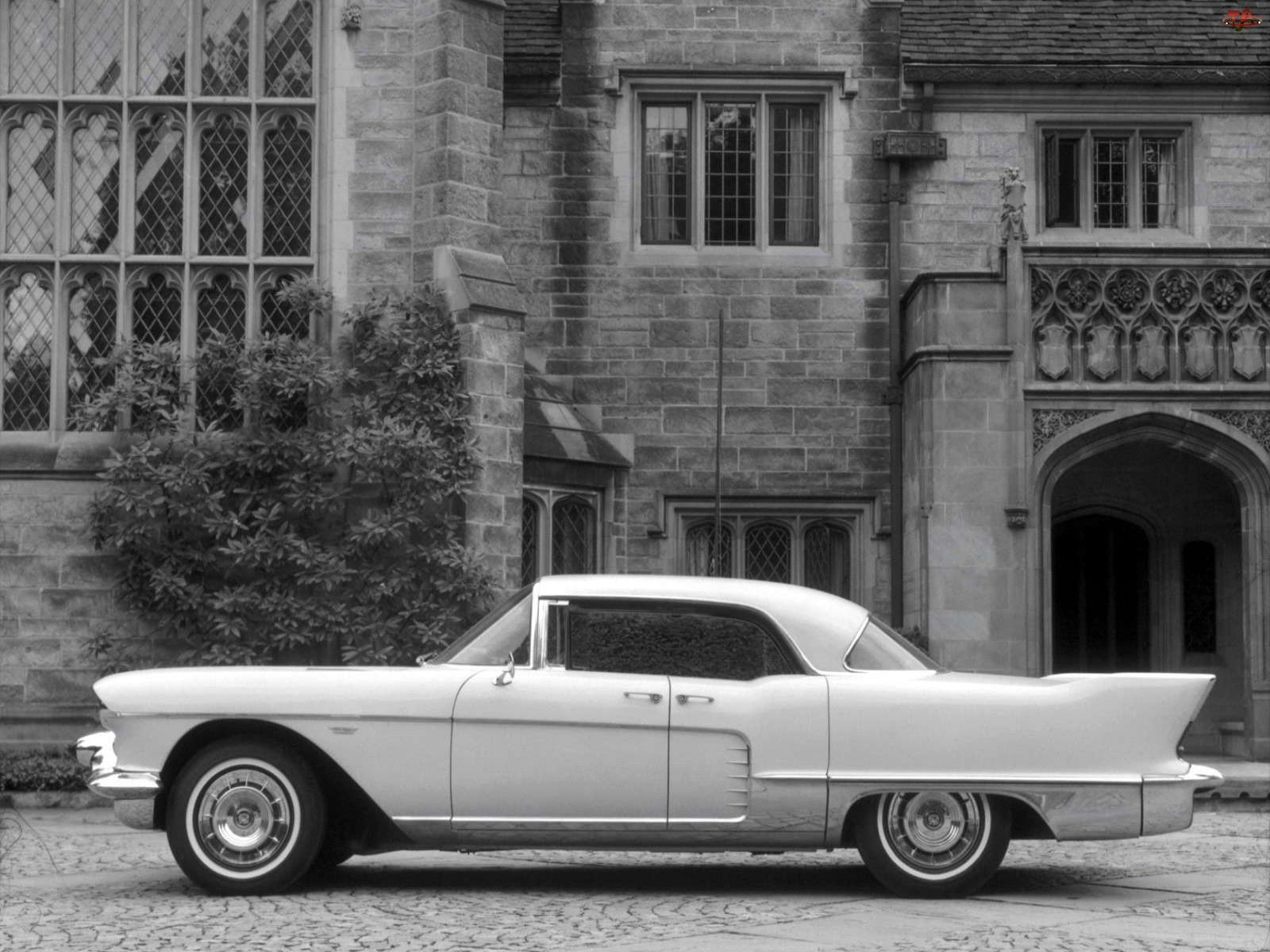 Cadillac Eldorado, Skrzydła